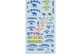 Decal Camel 1/24