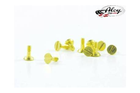 Special screw for motor mounts