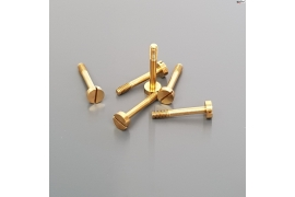 Special screws 13 mm for suspension