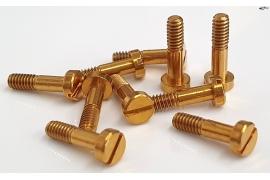 Suspension screws M2x9 mm