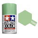 Pearl Green Paint Spray TS-60