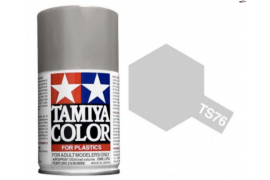 Pintura Spray Plata Mica  TS-76